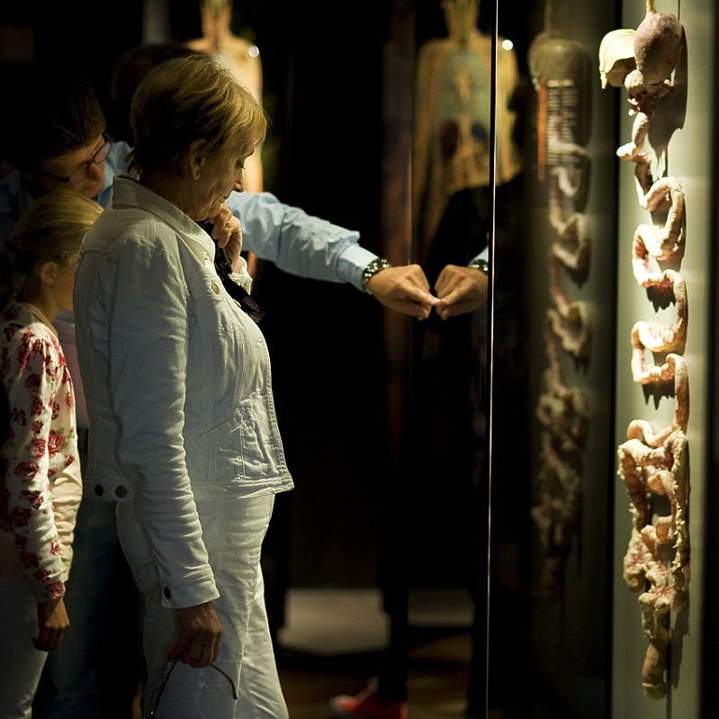 004a_attractions_tt_body_worlds_amsterdam_1.jpg