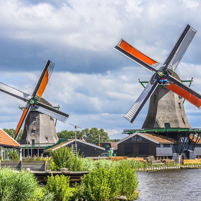 Keukenhof + Countryside & Windmills Tour