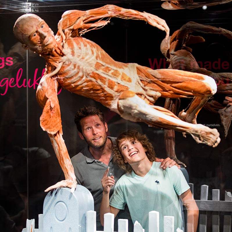 2018_TGI_Body_worlds_4.jpg